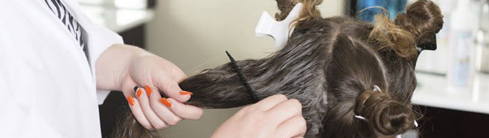 Lice Detection & Prevention